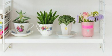 decoracao-plantaseflores-referans-blog-02