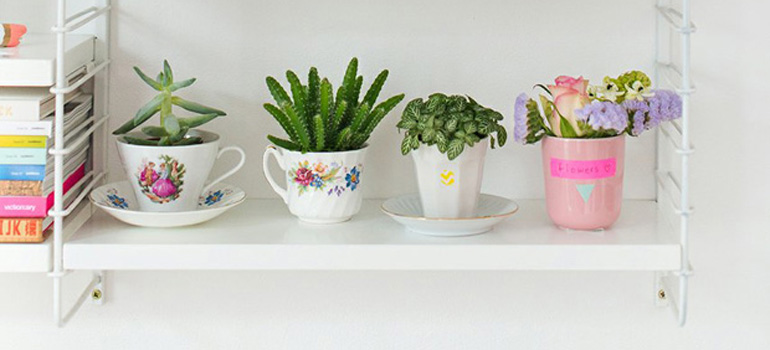 decoracao-plantaseflores-referans-blog-02
