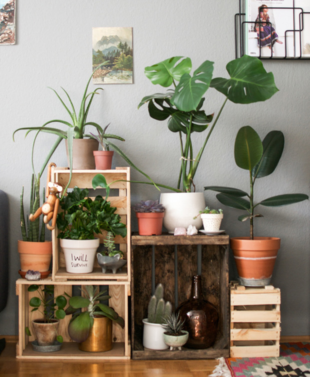 decoracao-plantaseflores-referans-blog-04