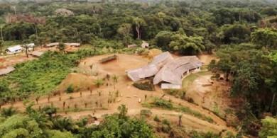 escola-floresta2
