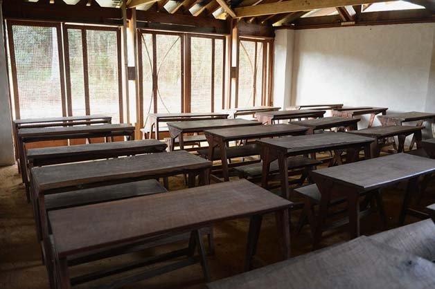 escola-floresta4