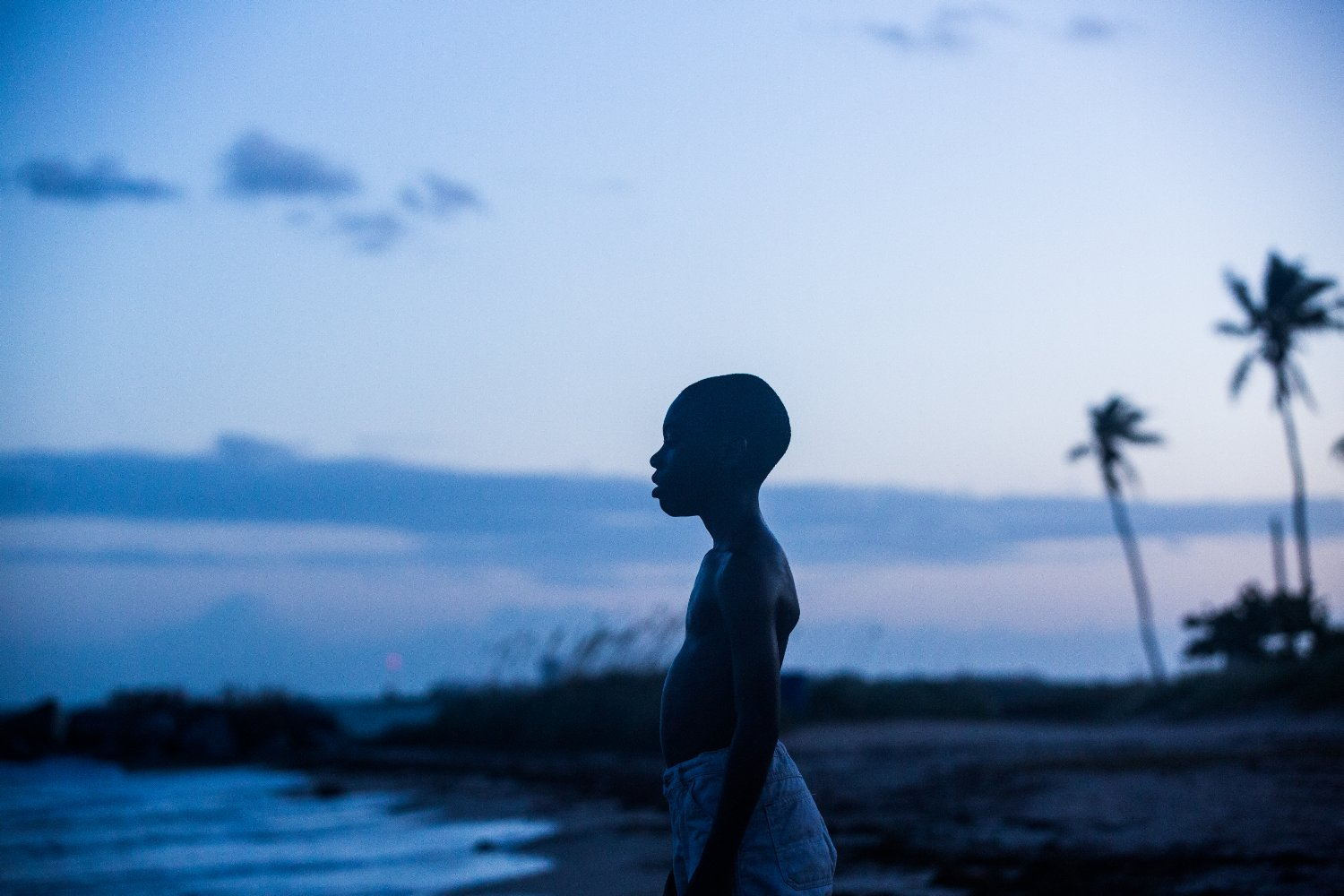 """Moonlight: Sob a Luz do Luar"" - Miami (EUA)"