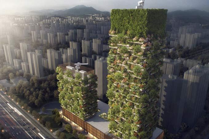 china-floresta